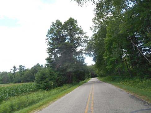 Beautiful backroads of central Wisconsin.